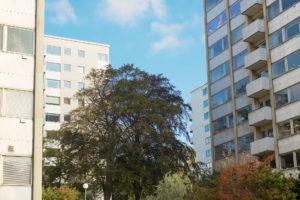 Vita höghus med träd i mitten